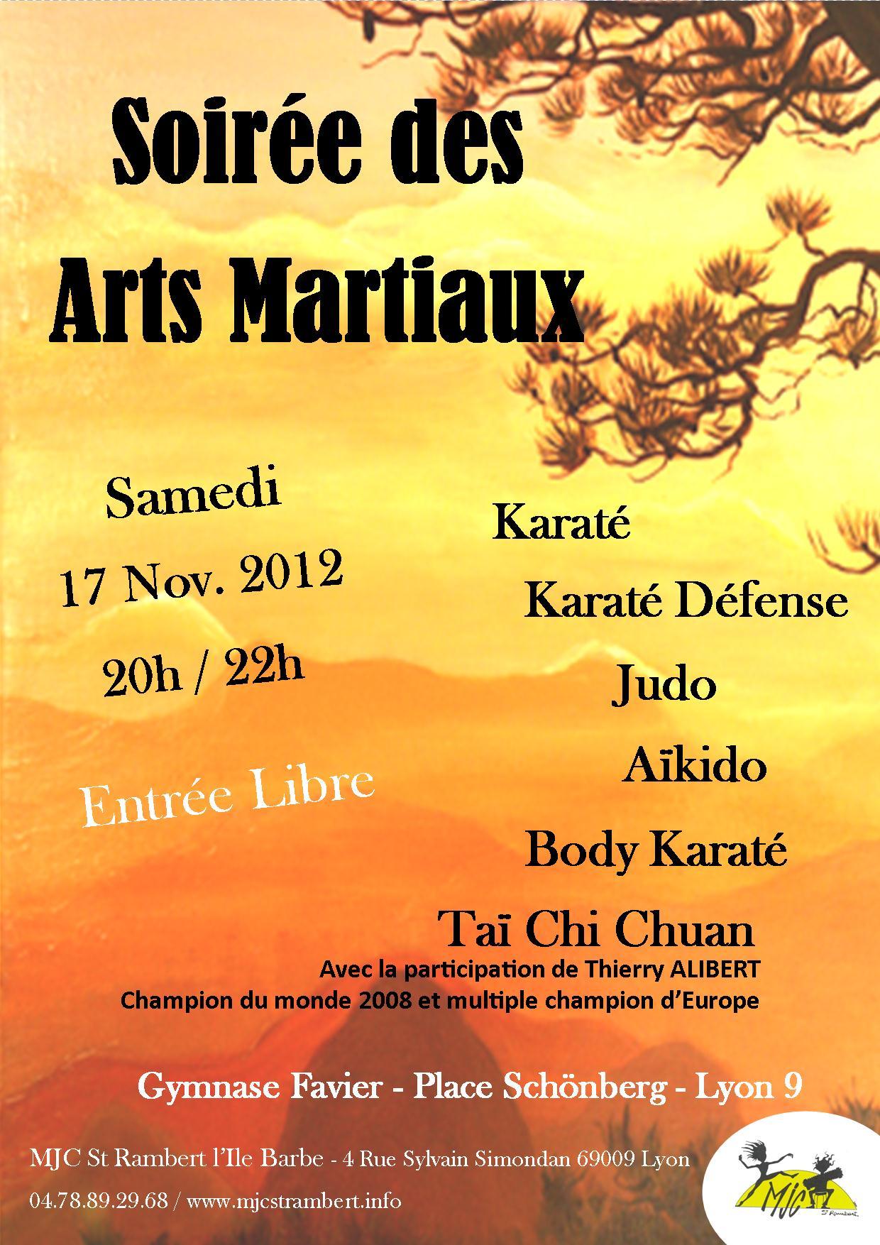 affiche arts martiaux 2012